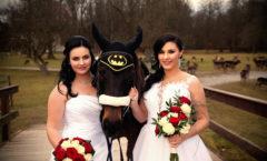 Dvojitý svatební den